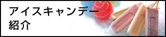 アイスキャンデー紹介